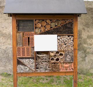 Gli insetti sono molto utili, costruirgli una casa è importante