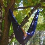 hammock-960320