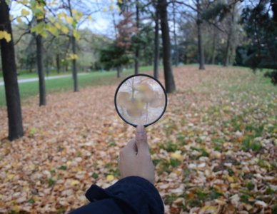 Vedere il mondo attraverso una lente d'ingrandimento è sorprendente